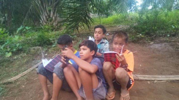 Melihat Belajar Anak-anak di Siporkas, Jalan Sejauh 2 Km hingga Panjat Pohon Durian Cari Sinyal