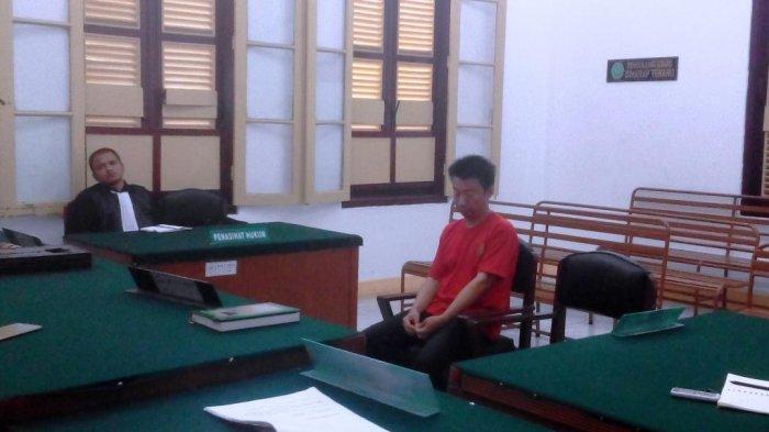 Penjual Kulit Harimau Sumatera Divonis 2 Tahun Penjara