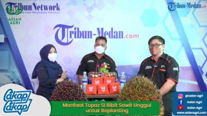 Topaz, Bibit Sawit Unggul Asian Agri Punya Sejuta Manfaat Bagi Masyarakat