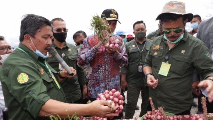 Daerah Kedua di Indonesia, Kementan RI Tunjuk Kabupaten Humbahas Jadi Food Estate