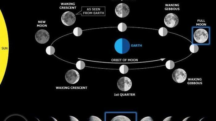 Materi Belajar Sains Kelas 7: Penjelasan 8 Fase Pada Bulan serta Dampak Bagi Manusia