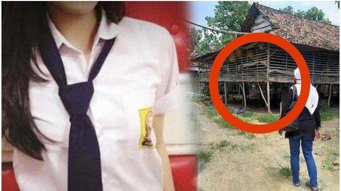 Kasihan Ibu Sudah Tua, Alasan Abang Siswi SMP Korban Pemerkosaan di Kandang Ayam Cabut Laporan