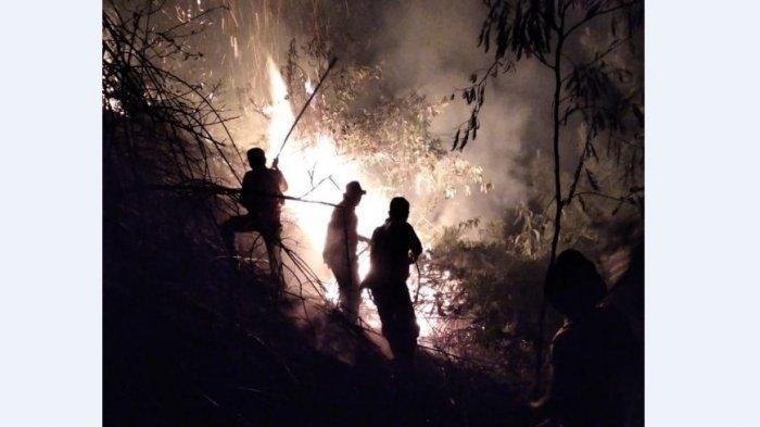 KEBAKARAN Hebat Gunung Sipiso Piso, 10 Hektare Lahan Dilalap 'Si Jago Merah'