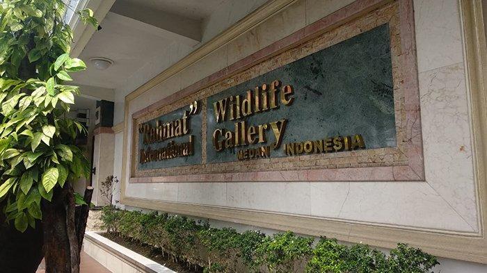 Halaman depan Rahmat International Wildlife Museum and Gallery