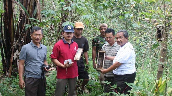 Hasanuddin (baju putih) bersama para pembudidaya lebah madu saat memanen madu