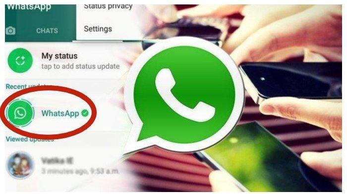 HEBOH Status Whatsapp Curi Data Rekening Bank Dipastikan Hoaks, Jawaban Whatsapp Sebenarnya