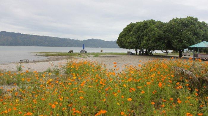 Makin Hits, Ini Tiga Destinasi Pantai Pasir di Pinggiran Danau Toba