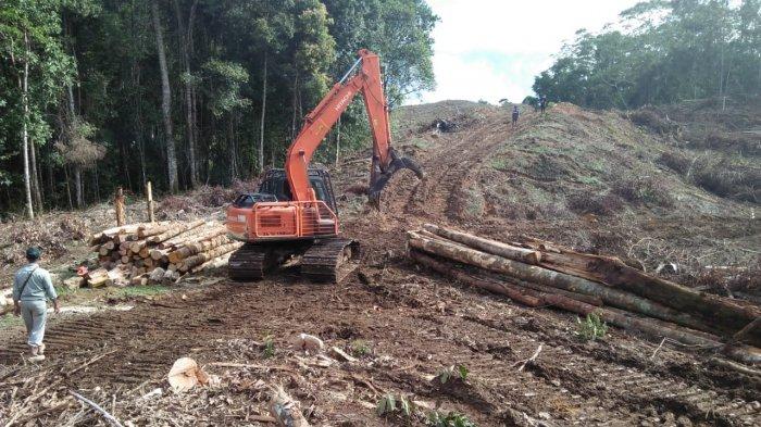 PT TPL Rusak Hulu Sungai Hutan Adat dan Satpam Berbadan Tegap Cegat Warga yang Memfoto Lokasi