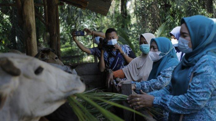 TP PKK Kabupaten Asahan Lakukan Pembinaan Lomba UP2K di Desa Marjanji Aceh Kecamatan Aek Songsongan