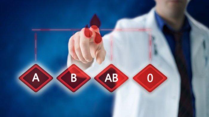 Materi Belajar Sekolah, Golongan Darah: Sistem dan Komponennya