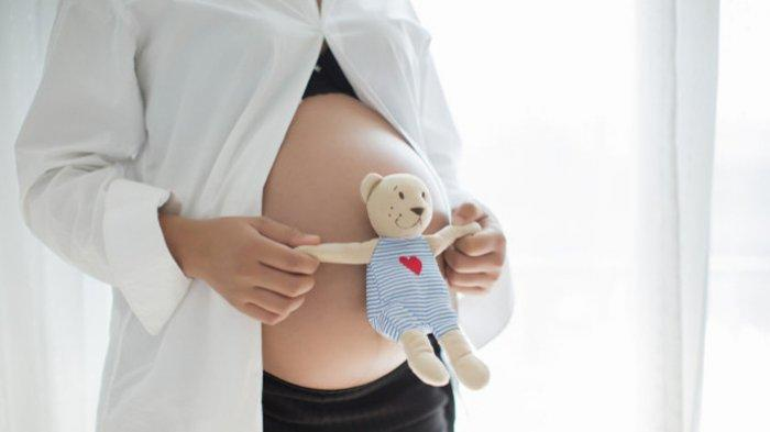 Ikatan Bidan Indonesia Dukung Program Vaksinasi untuk Ibu Hamil