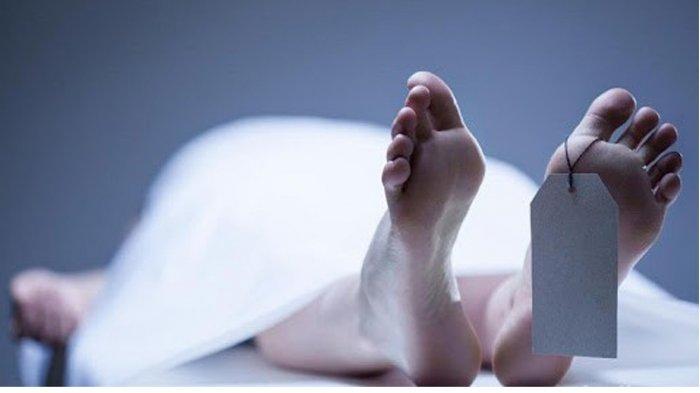 Mayat Ibu dan Bayinya Ditemukan Membusuk di Lahan Kosong Perumahan