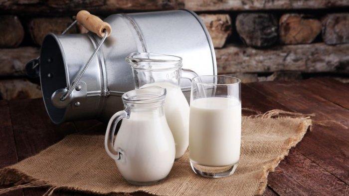 Daerah Penghasil Susu Segar Terbesar di Indonesia