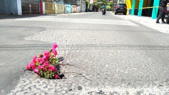 Jadi Pertanda Hati-hati, Warga Jalan Mayang Medan Letakkan Bunga di Lubang Sedalam Satu Meter