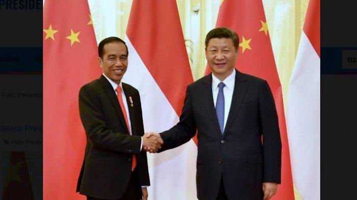 Presiden China Xi Jinping Bakal Rebut Kalimantan dan Minta Jokowi Mundur, Ini Fakta Sebenarnya