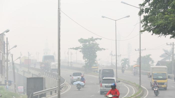 Asap Kebakaran Hutan dari Provinsi Riau Mulai Cemari Udara di Kota Medan dan Wilayah Sumut