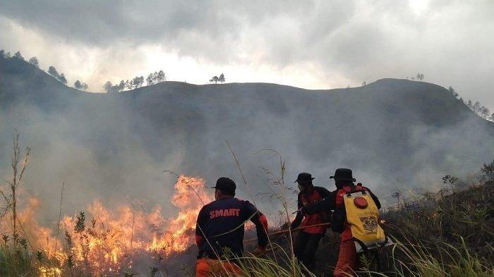 Kebakaran Hutan dan Lahan Kembali Terjadi di Merek, Api Belum Dapat Dipadamkan Hingga Malam