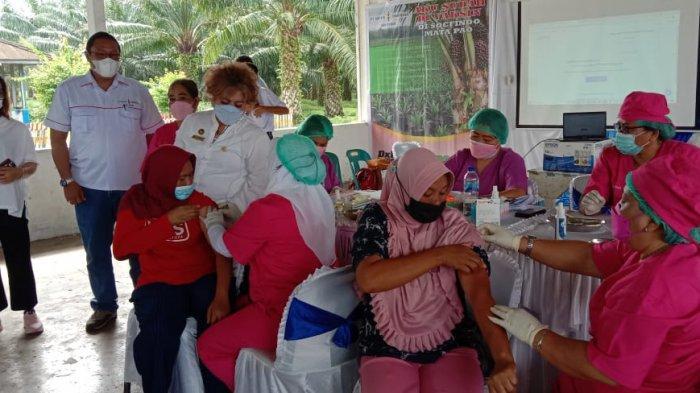 642 Masyarakat Dan Karyawan Perkebunan di Sergai Ikuti Vaksinasi