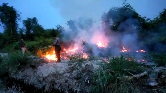 INFO BMKG - Terpantau 38 Titik Panas di Sumatera Utara Hari Ini