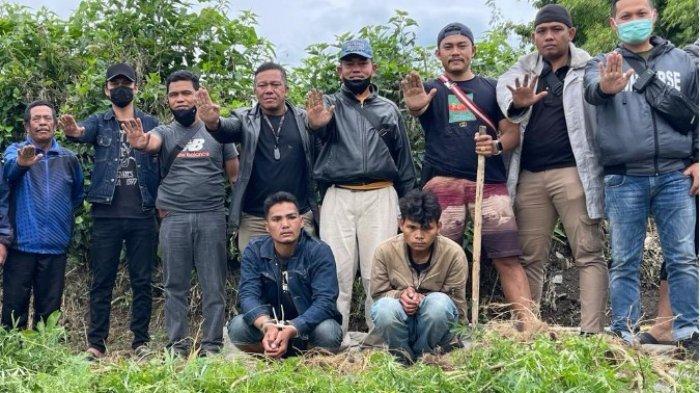 SATRESNARKOBA Polres Tanah Karo Ungkap Ladang Ganja, Berawal dari Penangkapan Dua Pelaku