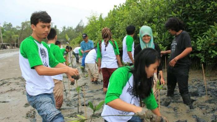Selamatkan Lingkungan, Mahasiswa Ini Tanam Mangrove