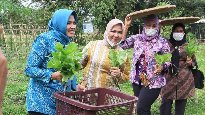 Tiorita Bina Desa Perkebunan Bukit Lawang, Sebut Bakal Penuhi 11 Indikator LBS Sumut