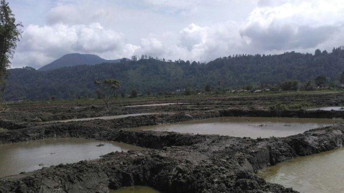 Pemilik Kolam Lalai dan Mengakibatkan Sonia Tewas Kesetrum