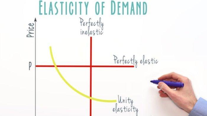 Materi Belajar Ekonomi Kelas 10: Konsep Elastisitas dan Jenis Elasitas dalam Kegiatan Ekonomi