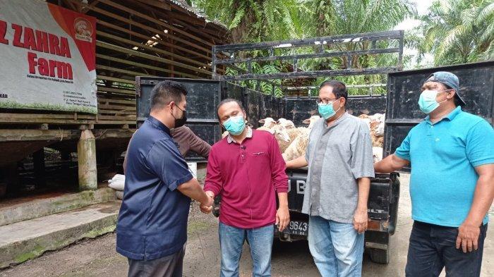 Kampung Matfa Terima 30 Domba Kurban dari Aliyah Rizq Farm