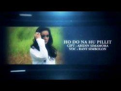 Lirik dan Chord Gitar Lagu Batak Ho Do Na Tarpilit Dipopulerkan Shandy Trio Feat Caca Manalu