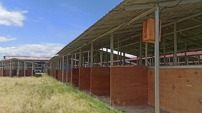Mengenal Lapangan Bersejarah di Kota Balige, Digunakan Sebagai Tempat Pertunjukan Seni dan Budaya