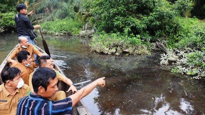 Ribuan Ikan di Sungai Sei Sirah Mati dan Air Menghitam, Dinas Lingkungan Hidup Ambil Sampel Air