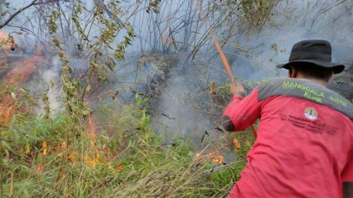 Kebakaran Lahan di Merek Diduga karena Ritual Memanggil Hujan di Tengah Kemarau