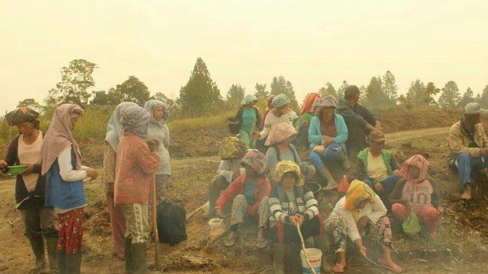 Tiga Warga Dilaporkan PT TPL Ke Polisi, Masyarakat Adat Natungmika Mengadu ke DPRD Sumut