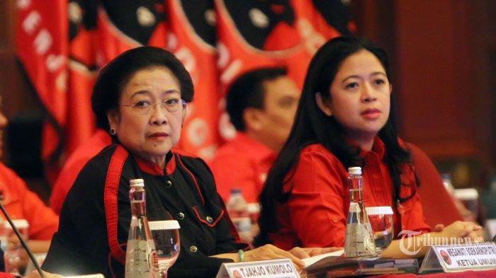 Ulang Tahun, PDI Perjuangan Jadi Partai Dewasa