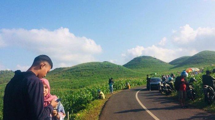 Ramai Dikunjungi, Bukit Teletubbies di Gunung Kidul Jadi Destinasi Wisata Favorit Baru Masyarakat