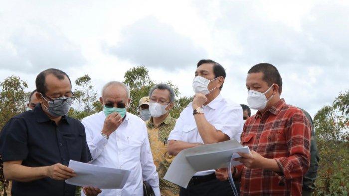 Kunjungi Lahan KHDTK di Kecamatan Pollung, Menko Luhut Sebut Bibit Unggul Disiapkan