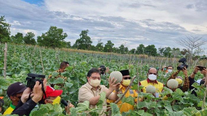 BMKG Sebut Hasil Pertanian Dataran Tinggi Kemungkinan Akan Jauh Lebih Baik Lantaran Iklim yang Bagus