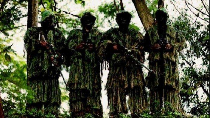 KKB Papua Ladeni 400 Pasukan Setan Perang Terbuka di Hutan Nduga, Mengaku tak Mundur Selangkah Pun