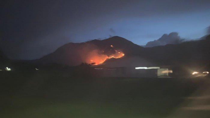 Kebakaran Lahan Kembali Melanda Kawasan Danau Toba, Kini Dua Bukit di Samosir Hangus Terbakar
