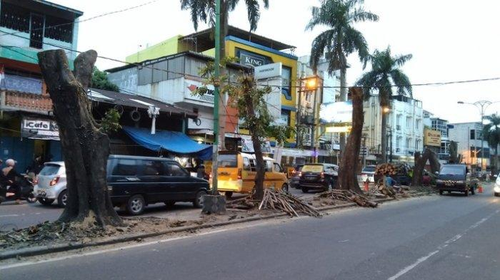 Warga Mengaku Tenang setelah Pohon di Jalan Brigjend Katamso Dipangkas