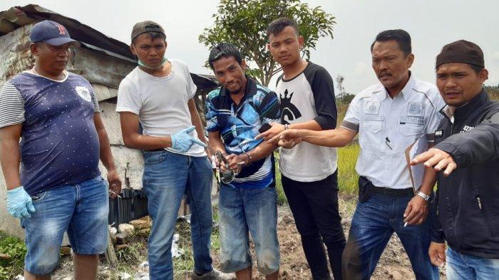 Kasus Pembunuhan Dimpu Munthe Remaja 13 Tahun di Dolok Sanggul, Dibunuh karena Perkataan Tak Pantas