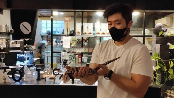 KOHI 91, Coffee Shop di Medan Padukan Konsep Cafe dengan Hewan Reptil