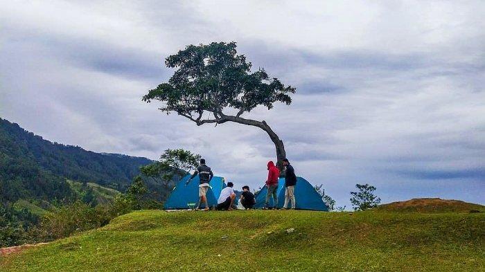 Bukit Beta di Samosir, Tawarkan Hamparan Rumput Hijau serta Jajaran Pegunungan