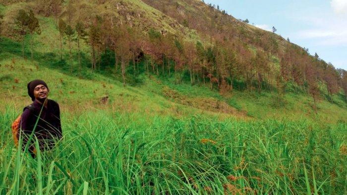 Pengunjung saat berfoto di Padang rumput yang langsung menghadap Danau Toba. Pemandangan ini akan ditemui dalam perjalanan menuju Air Terjun Sidompak.