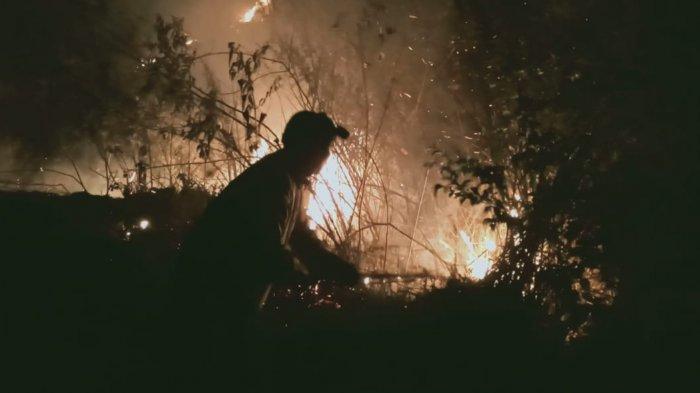 Hutan Toba Terbakar, Petugas Kesulitan Padamkan Api Karena Masalah Ini