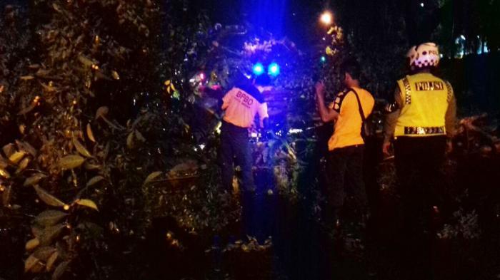 Pohon Tumbang di Jalan Sudirman