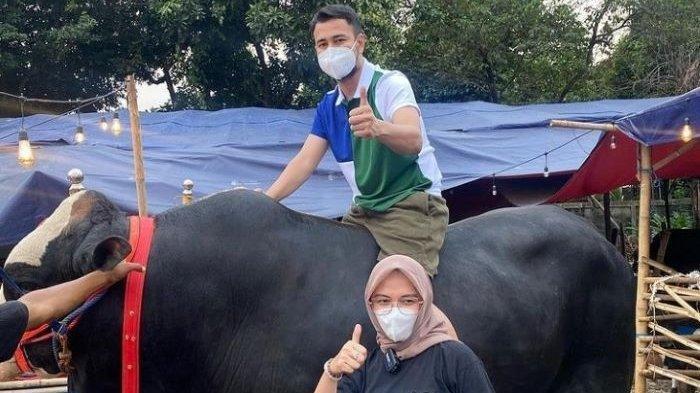 Artis-artis Ini Kurban Sapi Mahal dan Berbobot Besar di Hari Raya Idul Adha, Ada yang Sampai 1,4 Ton
