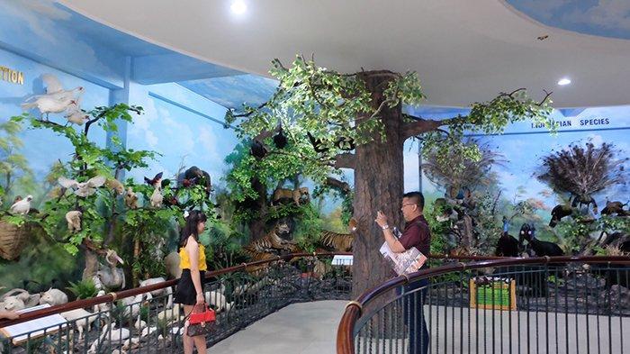 Rahmat International Wildlife Museum and Gallery Adakan Animal Lovers Setiap Hari Minggu