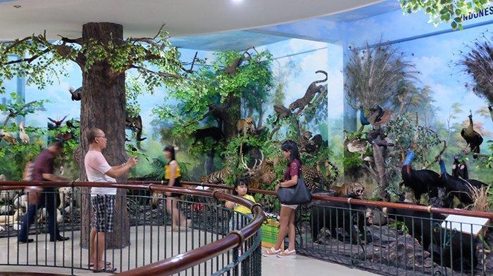 Member TFC Premium Bisa Dapatkan Gratis Tiket di Rahmat International Wildlife Museum and Gallery